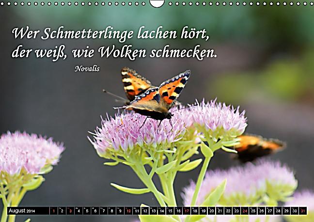 Buddha Zitate Deutsch