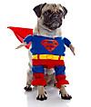 "Hundekostüm ""Superman"" (Größe: M)"