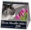 Kleine Wunder sehen, Postkartenkalender 2015